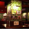 Фотография: Пивной ресторан Doctor Scotch Pub