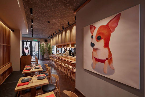 Фотография: Ресторан Shiba